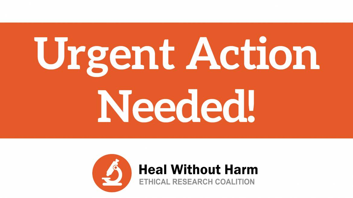 Action Alert: Call Members of the Committee on Assembly Organization!